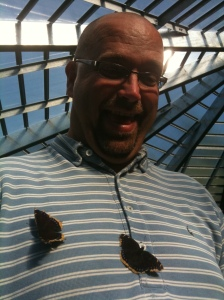 Butterflies with Doug