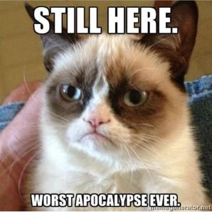-cat now